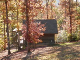 Cabins of Elk Run - Helenwood vacation rentals