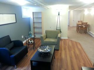 St. Anthony Park Basement 2 bedroom - Saint Paul vacation rentals