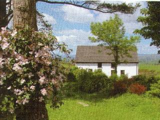 Cottage With Amazing Views - Dunmanway vacation rentals