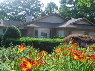 Dock Holiday House - Loudon vacation rentals