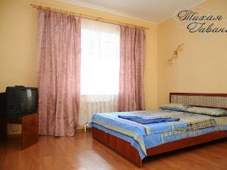 cozy 1 room apartment - Syktyvkar vacation rentals