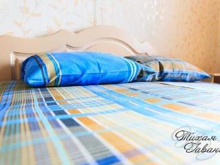 cozy 2 room apartment - Syktyvkar vacation rentals