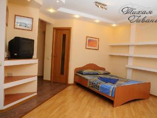 homelike studio apartment - Syktyvkar vacation rentals