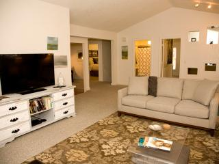 Steps from Old Town Square! Large, private, new! - Fort Collins vacation rentals