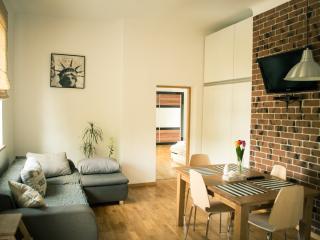 Cluj Napoca Apartament Lux Baritiu - Romania vacation rentals