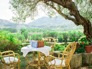 Holiday farmhouse in Valencia - La Drova vacation rentals