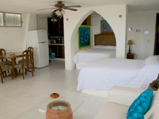 OceanView Penthouse waiting for you - Paamul vacation rentals