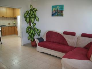 3room apartment on Carmel mountain - Gedera vacation rentals
