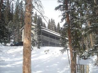 Spacious and secluded mountain house. - Fairplay vacation rentals