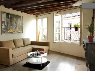 Beautiful studio 36 m2 + beautiful sunny terrace - Paris vacation rentals