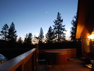 Milo Bear Cabin - Ski views, spa, dogs welcome - Big Bear Lake vacation rentals