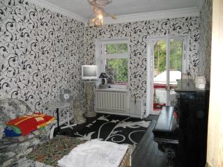 2 rooms apart. near ARCADIA district-50$ per 24h. - Odessa vacation rentals