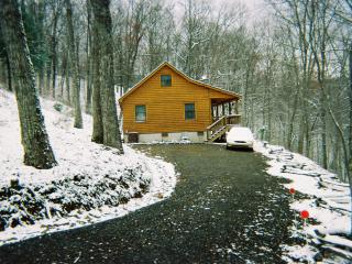 Cabin in the Woods - Murphy vacation rentals