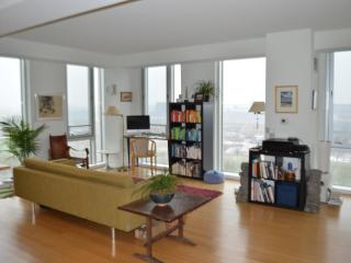 New Large Luxury Condo, Park Views - Cambridge vacation rentals