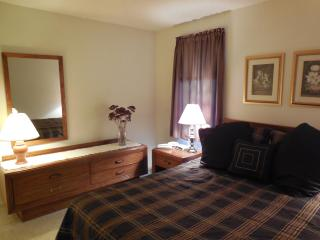 Riverview 1 BR Condo; Aspen 5 at Dells Club Condos - Wisconsin Dells vacation rentals
