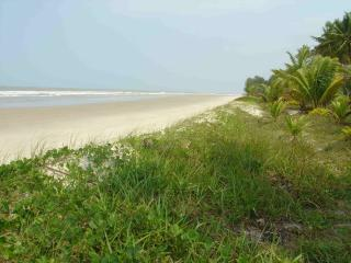 beach - Ilheus vacation rentals