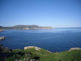 studio au bord de mer a Calvi - Calvi vacation rentals