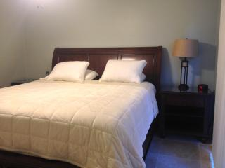 Short-term 1/1 Galleria Better than Extended Stay! - Houston vacation rentals