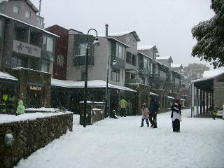 Thredbo Squatters Run Apartments - Thredbo Village vacation rentals