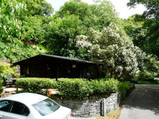 Whinfell Tarn Luxury Log Cabin - Skelwith Bridge vacation rentals