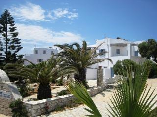 Spacious Family Suite - Naoussa vacation rentals