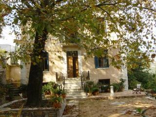 Mouresi Traditional Mansion - Tsagarada vacation rentals