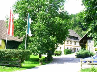 Moarhof - Rafting Camp Palfau - Liezen vacation rentals