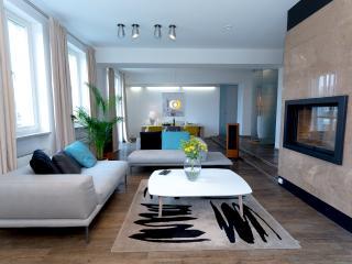Luxury 3 Bedrooms Apartment - Vilnius vacation rentals