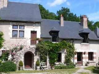 Closerie Falaiseau - Blois vacation rentals