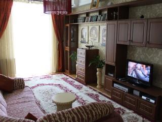 Apartment in classic style in centre of Chisinau - Chisinau vacation rentals
