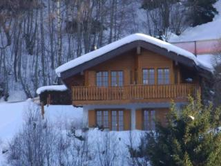Luxury chalet close to lifts. Great for a family - Nendaz vacation rentals