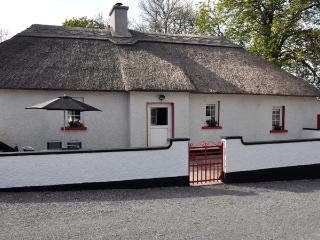 Molassy Cottage - Kilkenny vacation rentals
