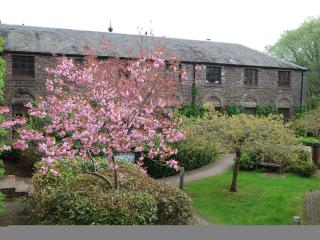 Apartment in Dunblane - Stirling vacation rentals