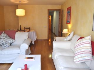 Girona centre apartment for 7 - Girona vacation rentals