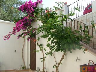 Villa De Paolis - Andrano vacation rentals