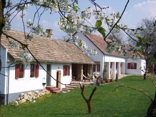 Pear Cottage - Szekesfehervar vacation rentals
