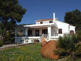 Amazing villa by the sea - Pyrgi vacation rentals