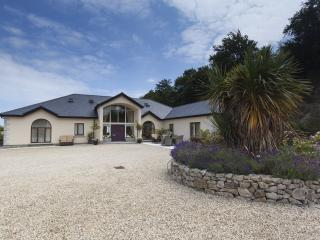 Golfers paradise adjacent to Dublin ,Co. Wicklow - Ashford vacation rentals