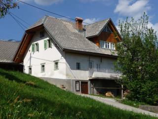 Alpine Retreat - Lake Bled - Bled vacation rentals