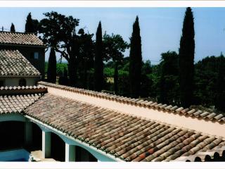 Propriete a la campagne - Beaumes-de-Venise vacation rentals