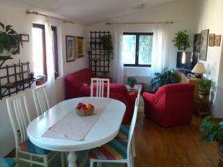 Apartment Lozica II - Korcula Town vacation rentals