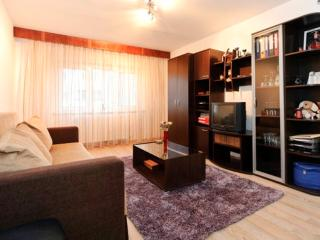 Apart. for 2-4 guests - Brasov - Brasov vacation rentals