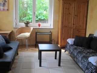 Villa Dalla - Würzburg vacation rentals