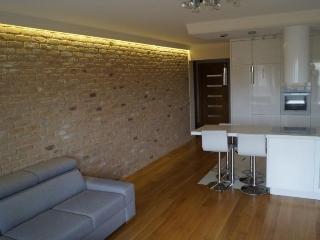 2 rooms modern in Brno - Brno vacation rentals