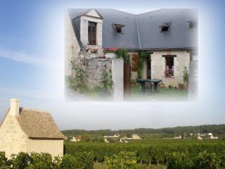 L'INGRANDES CHARMEUSE MEUBLE 3* VAL DE LOIRE - Bourgueil vacation rentals