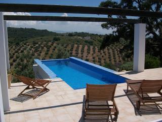 La Casa de la Colina - Fuentes de Cesna vacation rentals