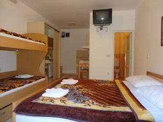 Apartment No.6 with 4 beds -Tivat - Tivat vacation rentals