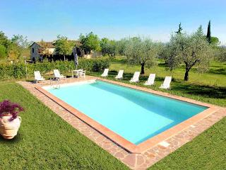 Tuscan style Villa, Private large Garden with Pool - Colle di Val d'Elsa vacation rentals
