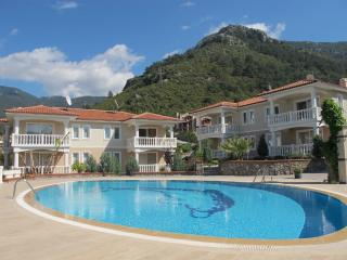 Oludeniz Lovely Holiday Apartment/House with Pool - Oludeniz vacation rentals