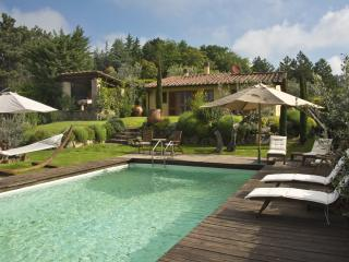 Villa Ginestra - Scarperia vacation rentals
